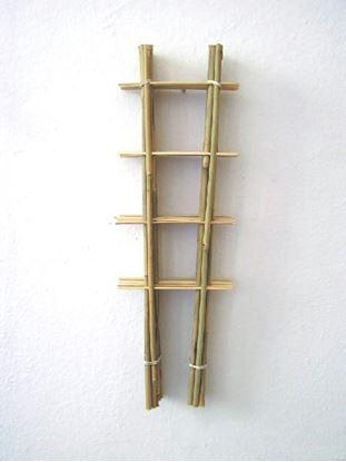 Obrázok z Rebrík bambusový 60 cm - BALENIE 10ks