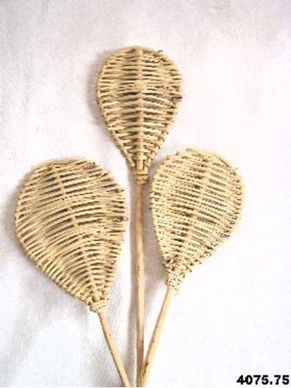 Picture of Lata leaf - přírodní, na stonku (10ks)