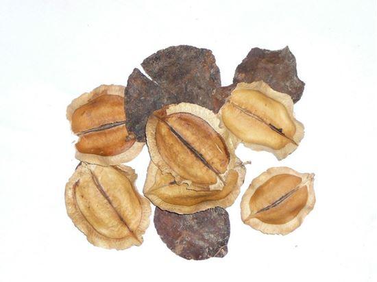 Obrázek z Jacaranda - přírodní (0,5kg)