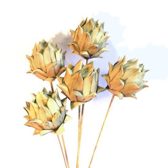 Obrázok z Artichoke khejur - prírodný, na stonke (10ks)