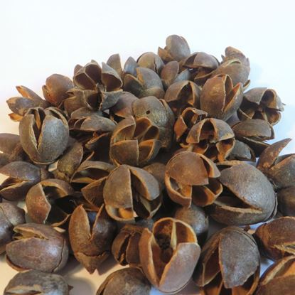 Obrázok z Bakuli - prírodné (0,5kg)
