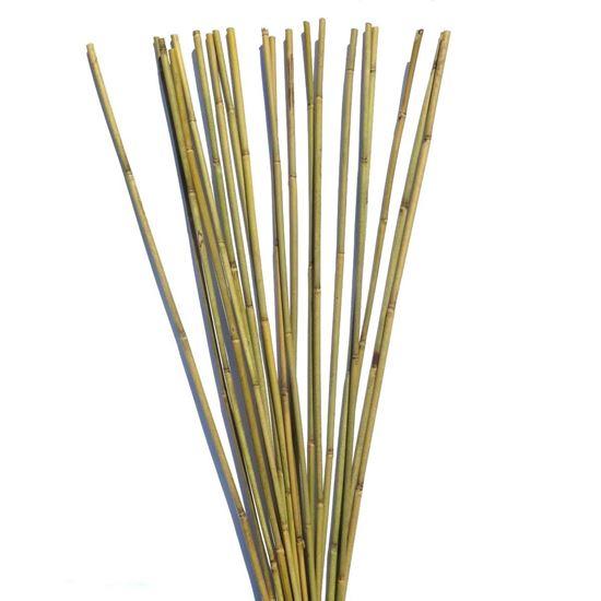Obrázek z Tyč bambusová 270 cm, 22-24 mm