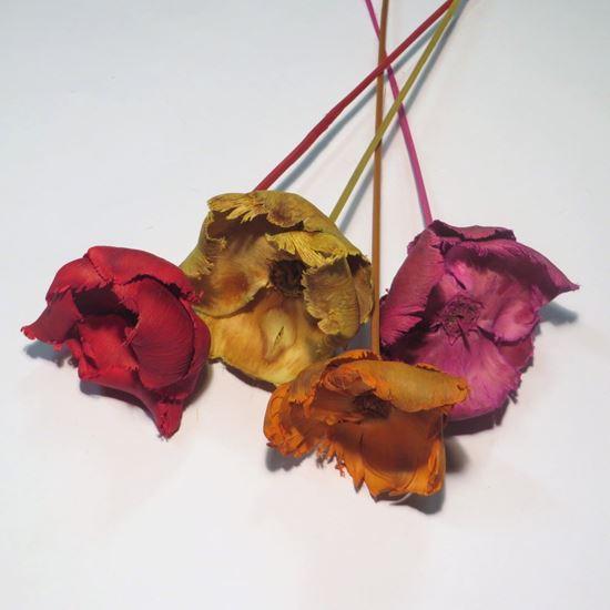 Obrázek z Palm cap - barevný, na stonku (10ks)