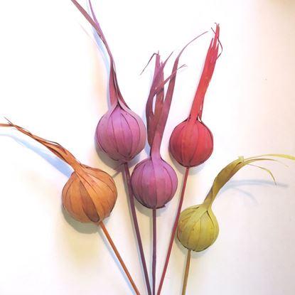Obrázek Eliot - barevný, na stonku (10ks)