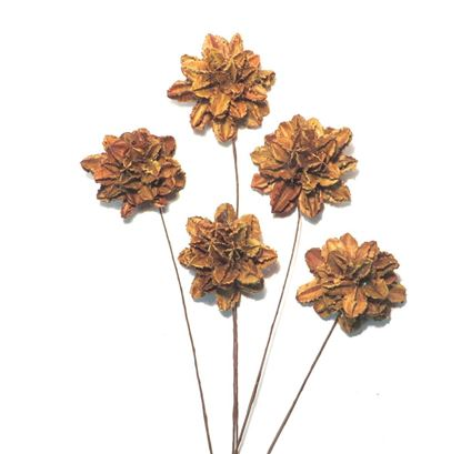 Picture of Arjun flower - přírodní, na stonku (10ks)