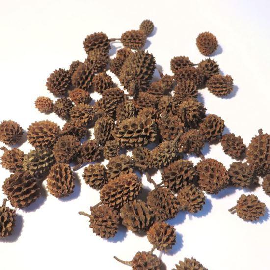 Picture of Casurina - přírodní (1kg)