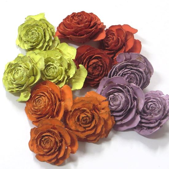 Picture of Cedar rose mini - barevná (0,5kg)