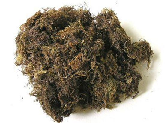 Picture of Mech - přírodní (0,1kg)