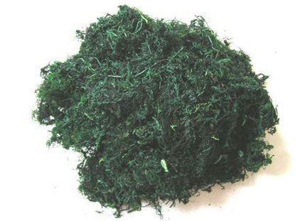 Obrázek Mech - zelený (0,1kg)