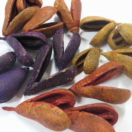 Picture of Mike fruit (Bagon fruit) - barevný (50ks)
