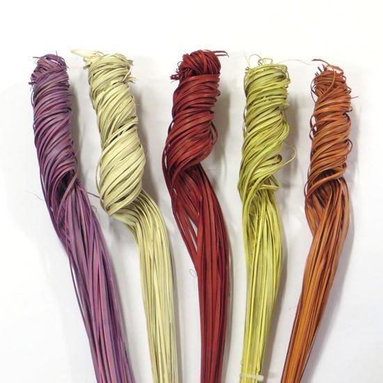 Obrázek z Palm ting ting curly - barevné (5 svazků)