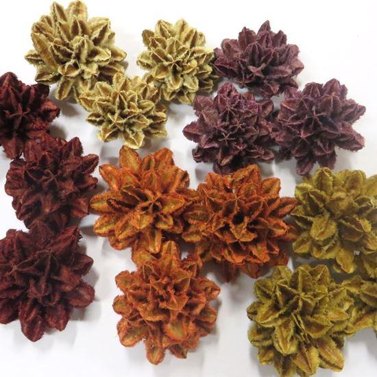 Picture of Arjun flower - barevná (40ks)