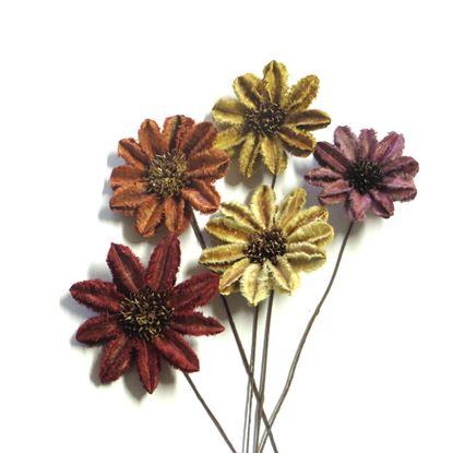 Picture of Arjun sunflower - barevná, na stonku (15ks)